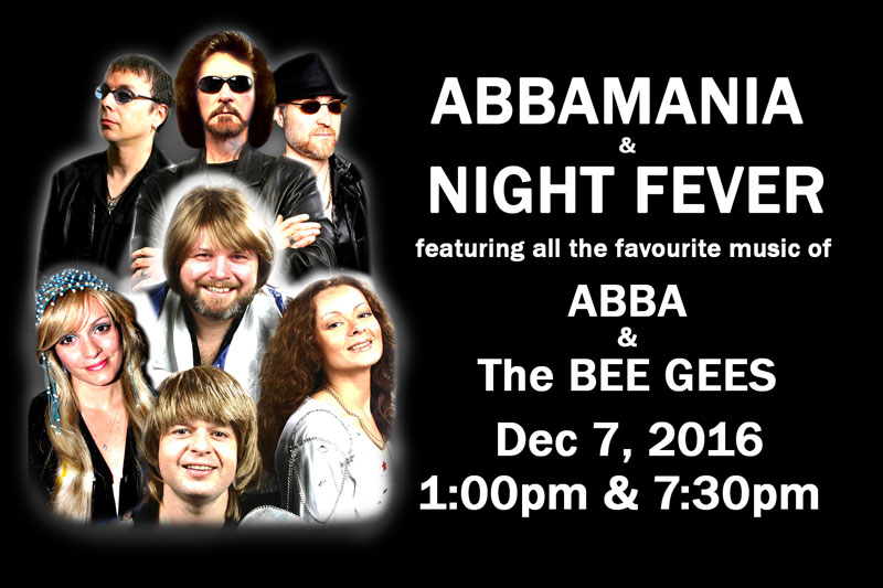 Bee Gees & Abba Tribute Band: NIGHT FEVER
